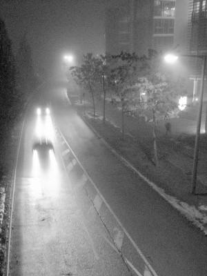 Nebel in Vaihingen III