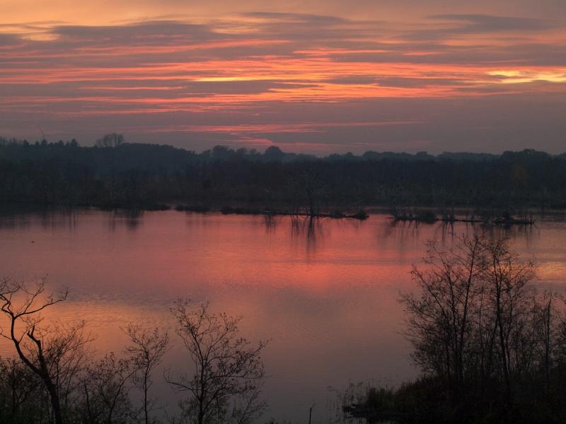 Mecklenburger Seenplatte im Herbst: Vögel und Landschaft